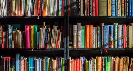 Foire aux livres 2017
