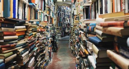 Diwan Lesneven - Foire aux livres 2019